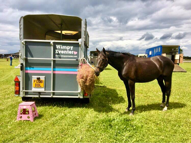 Horsebox with horse